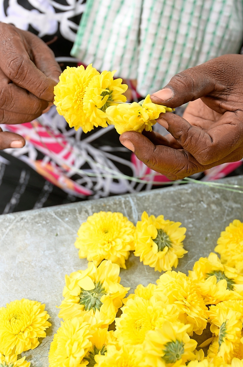 It takes Odiah a little more than a minute to make a small garland of chrysanthemums.