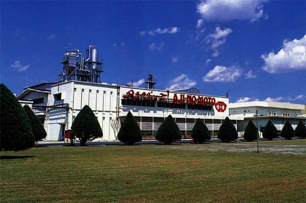 Ajinomoto (Malaysia) Bhd is investing RM355mil for a new plant and corporate office in Techpark@Enstek in Seremban.