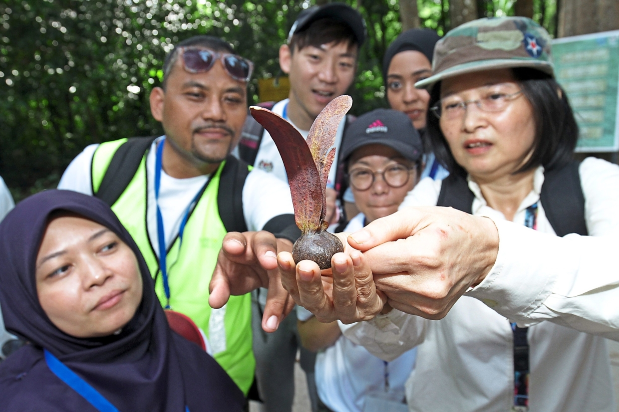 Wong briefing tour participants on the two-winged Keruing fruit.