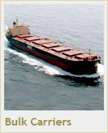 Maybulk narrows Q2 loss, expects freight rates to rise further
