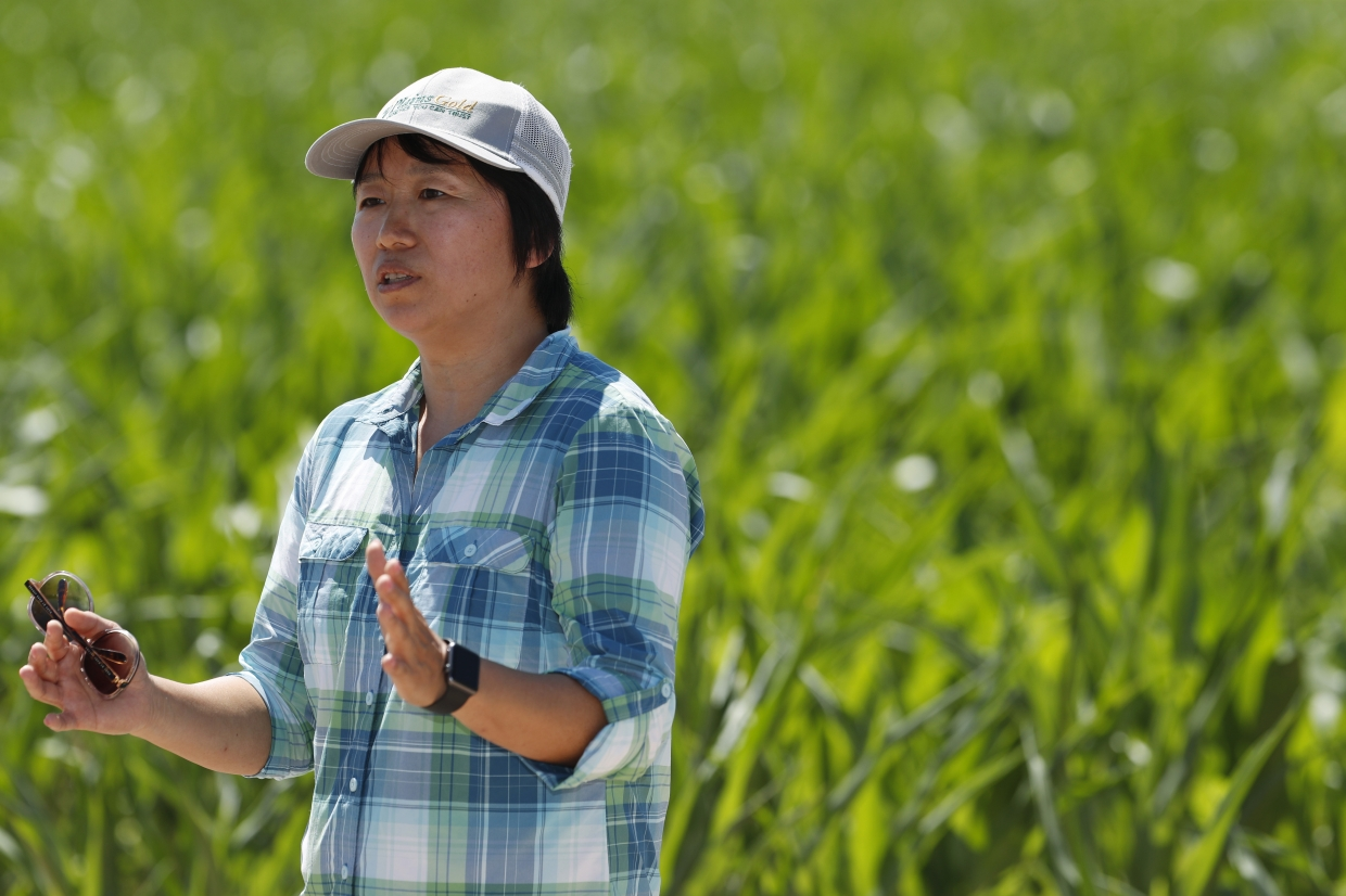 Zhang (pic) calls their endeavour 'precision agriculture, precision irrigation,' meant to deliver the right amount of water at the right time at the right location.