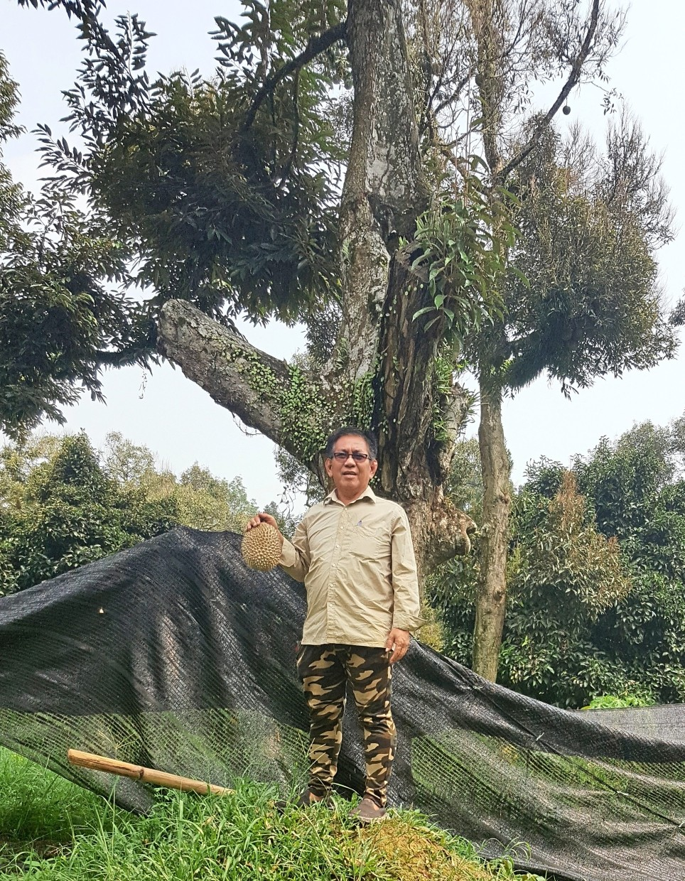 Frankie with his first Musang King durian tree in his orchard in Karak, Pahang.