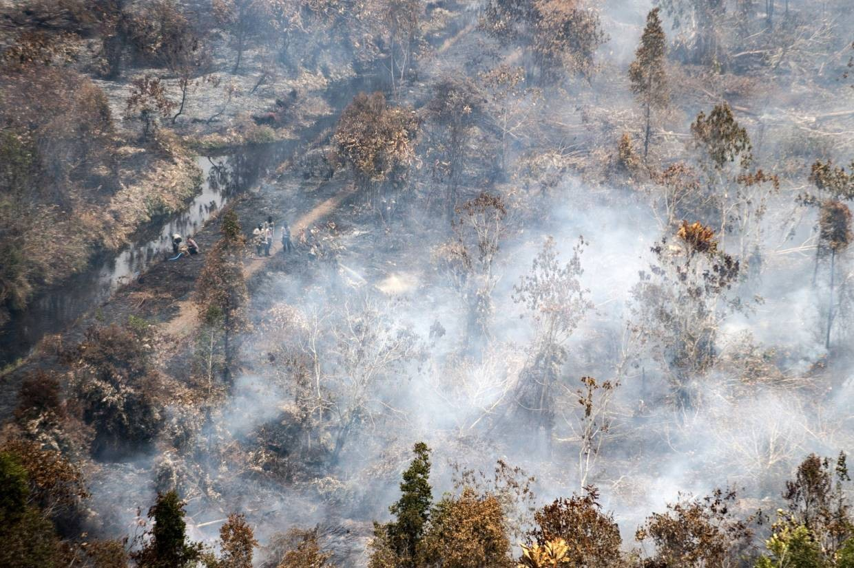 A team of fire fighters stands amid burning trees in Kahayan Hilir, Central Kalimantan, Indonesia on Wednesday, September18, 2019. -AP
