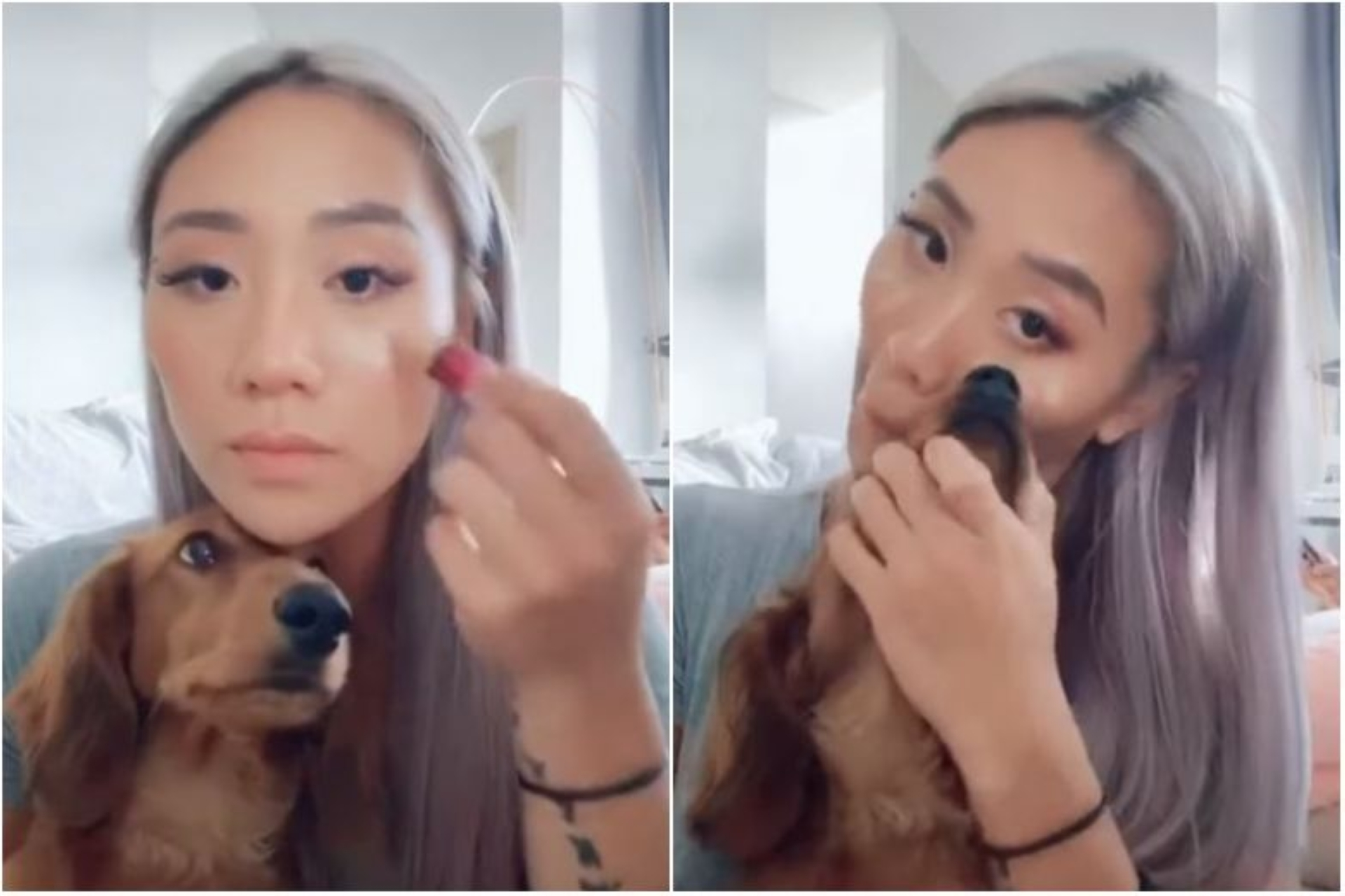 Netizens upset Sam Willows singer Sandra Riley Tang used dog's nose to apply make-up