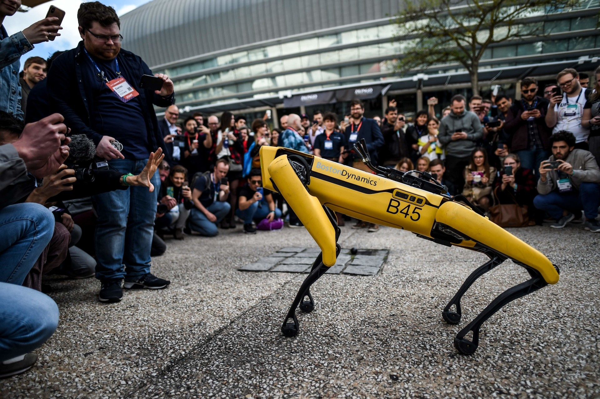 'Spot' the robot dog interacting with the crowd at the 2019 Web Summit.