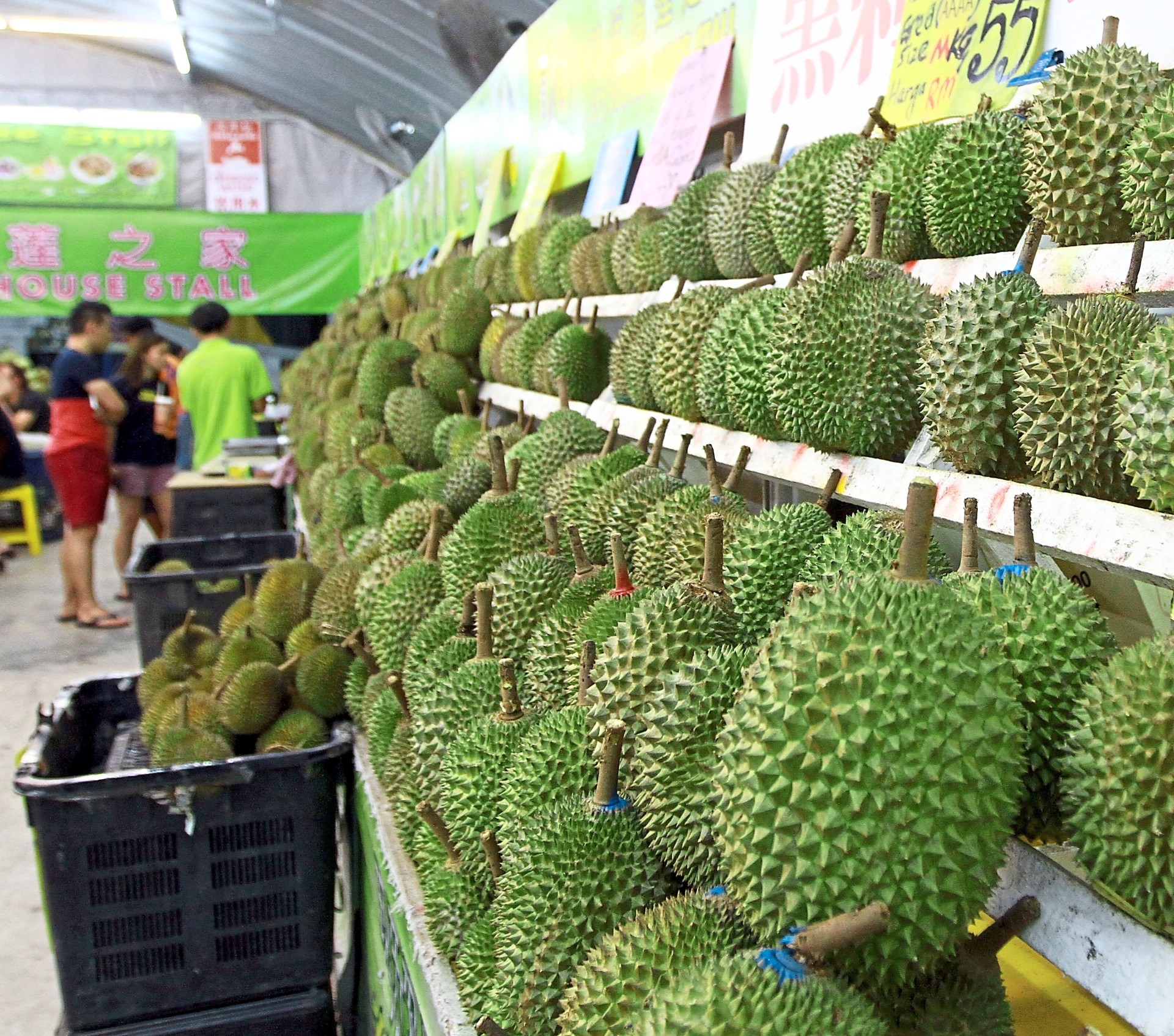 There are more than 10 different types of durians in the market but Musang King remains to be a popular choice.