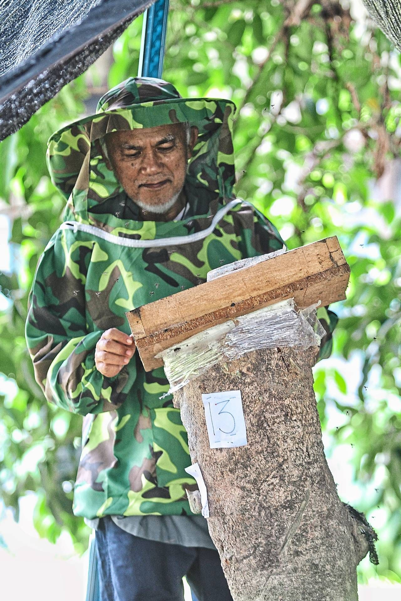 Kampung Selamat resident Tengku Mohd Shah Abdul Rahman looking after the stingless bee hive in his compound.