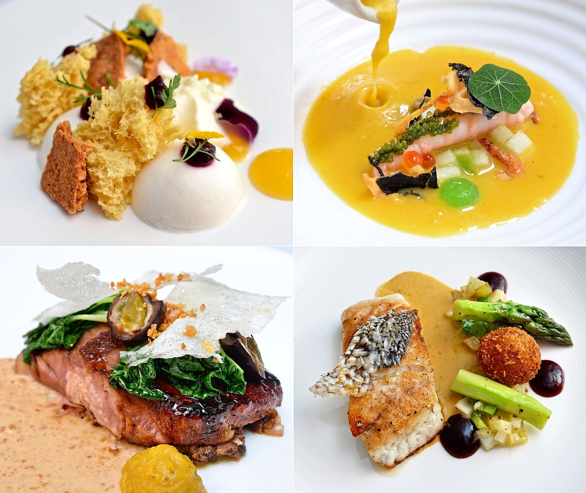 (Clockwise from top left) Balik Pulau Goat Milk 'Tofu', Fresh Caught Tugela Prawn, Line Caught Grouper with Crispy Scales and Coffee-glazed Iberico Pork Collar are among the delicious items featured in the Degustation Menu. — Photo: Jeremy Tan/The Star
