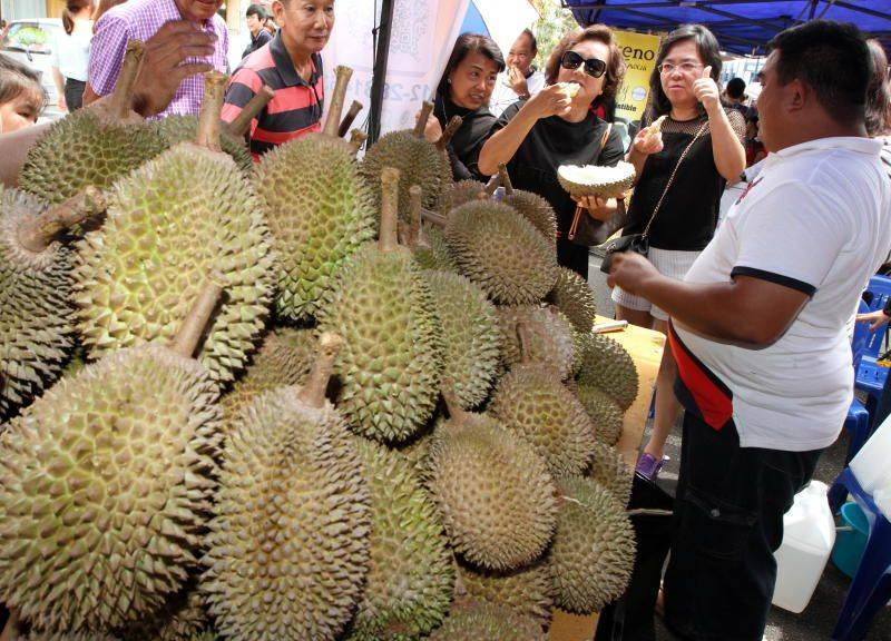 Durian runs in Bentong, Pahang, is easily achieved via a safe and easy drive from Kuala Lumpur along the E8 highway. –file pix