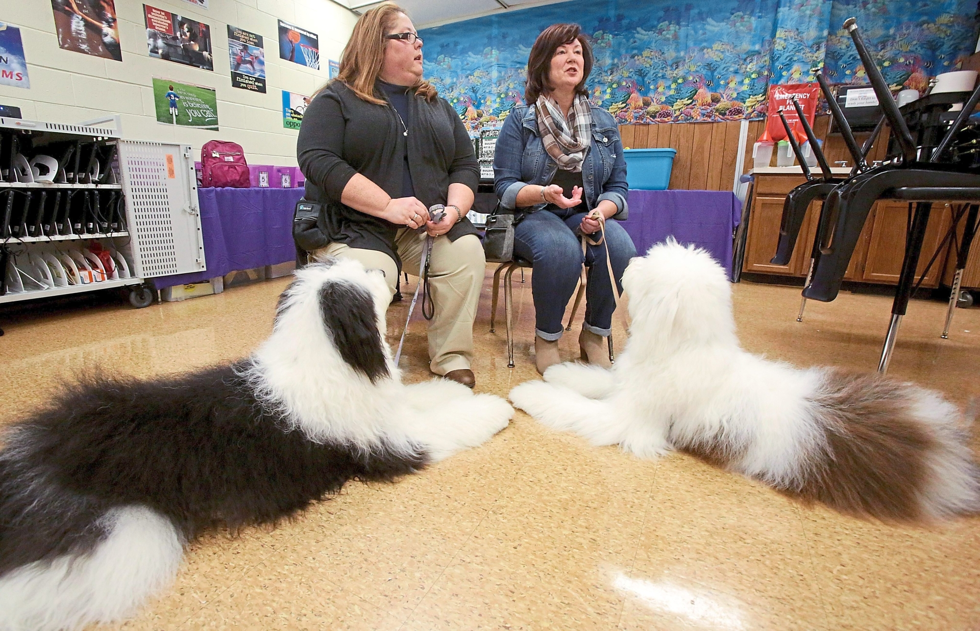 Evans (left) and her mother Kirker talk about the work it takes to train a therapy dog. Their dogs Harley Grace (left) and Charlie Brown are Newfoundland and Old English sheepdog mixes.