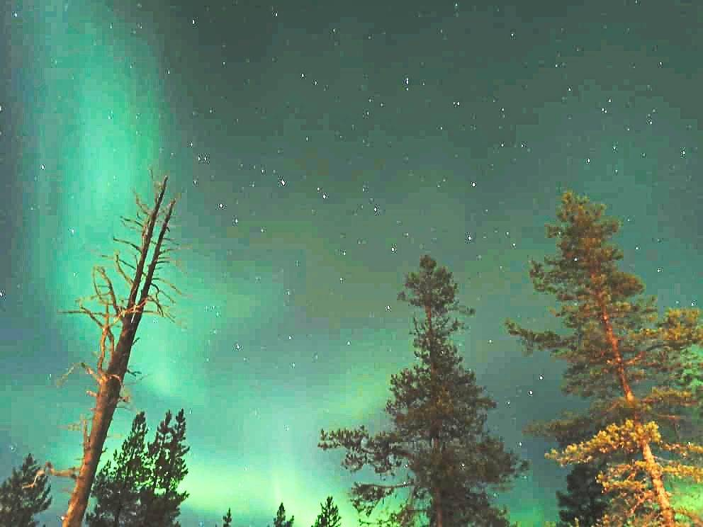 Aurora borealis, better known as northern lights in Finland. — WONG CHUN WAI/The Star