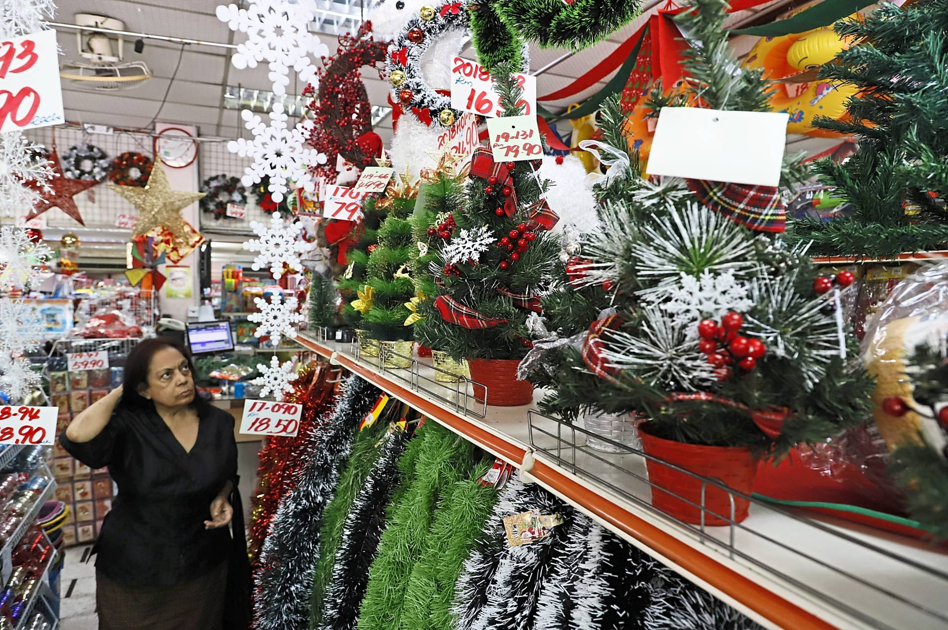 A shopper is spoilt for choice as she inspects the numerous Christmas trees on the shelf.