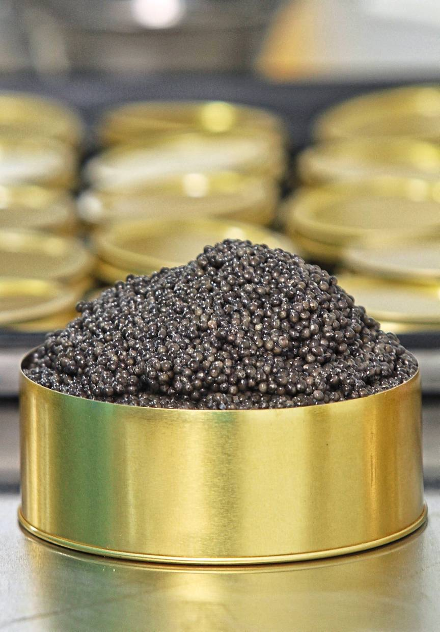 Malaysian produce, like T'lur Caviar (pictured here) has increasingly made its way to some of KL's top restaurants, a trend that is only likely to grow this year. — Filepic