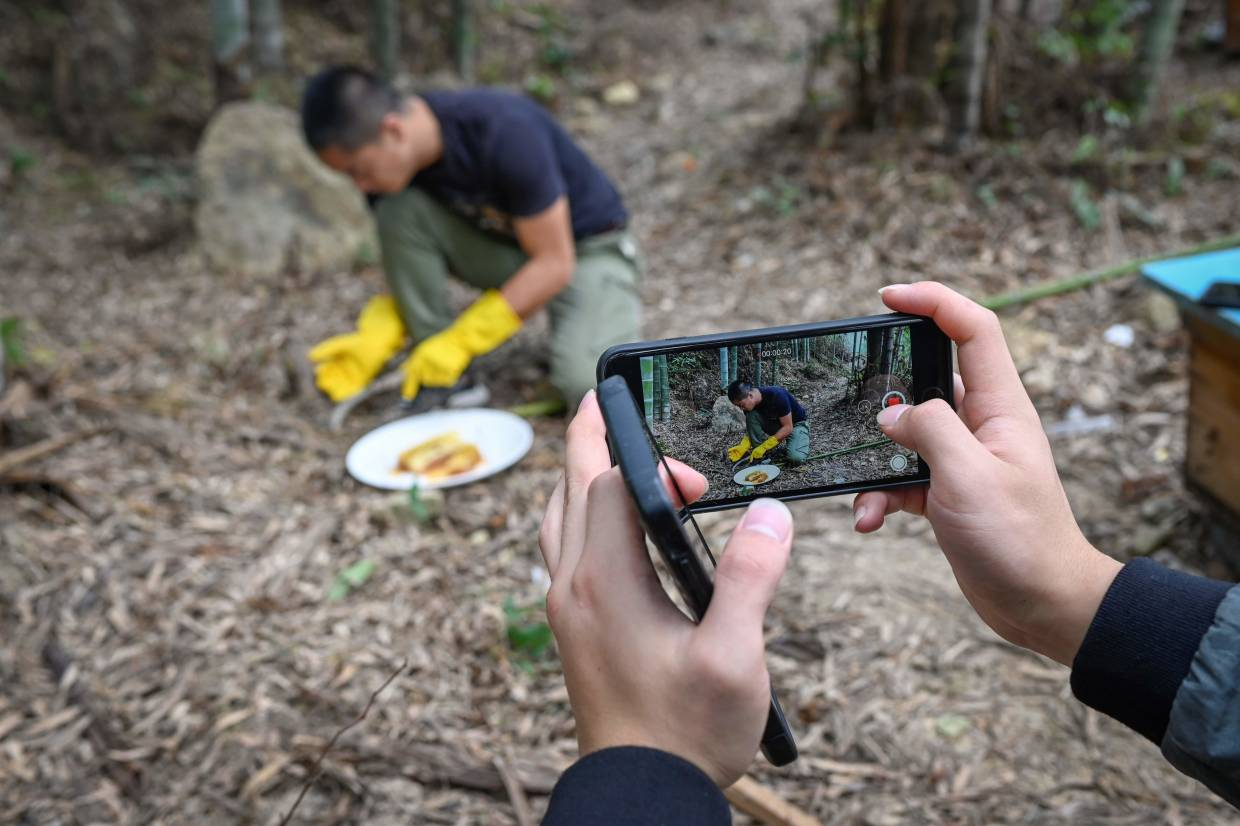 Ma's assistant (pictured hands) using a mobile phone to take a video as Ma (C) tastes honey at his apiary in Songyang county in China's Zhejiang province. The videos let increasingly discerning Chinese consumers see how the honey is made and have helped farmers like Ma out of poverty, which the ruling Communist party hopes to eradicate by 2020. — AFP