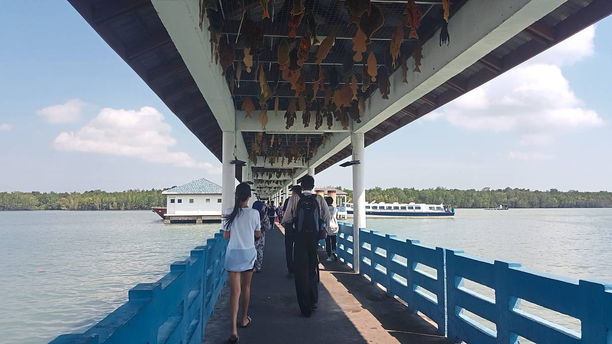 To get to Pulau Ketam, take a ferry from the Port Klang Jetty.