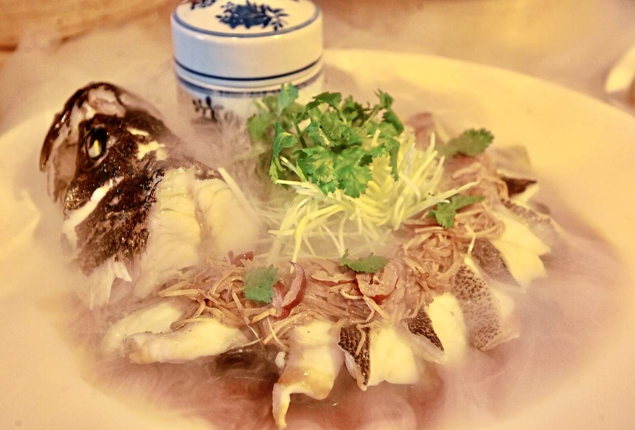 Steamed Dragon Grouper with Fungus and Enoki Mushroom.