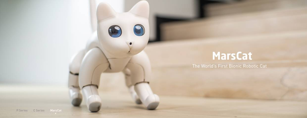 Each MarsCat is claimed to be unique, from eyes and body to personality which will evolve as you interact with it. — Elephant Robotics