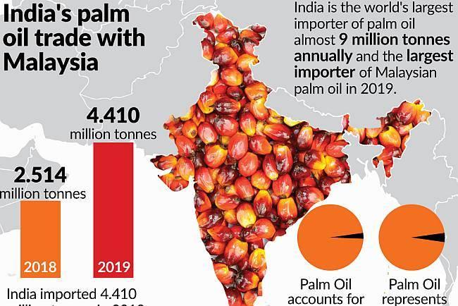 Navigating around India's palm oil ban