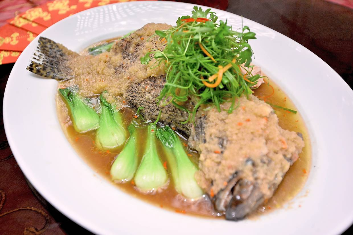 Steamed Sea Grouper with Cabbage.