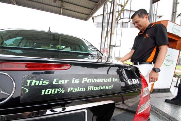 Indonesia biodiesel group says more capacity in 2020 could help exports