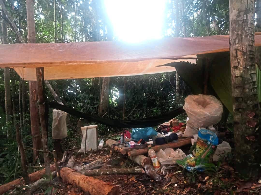 A camp set up by poachers in the forest.
