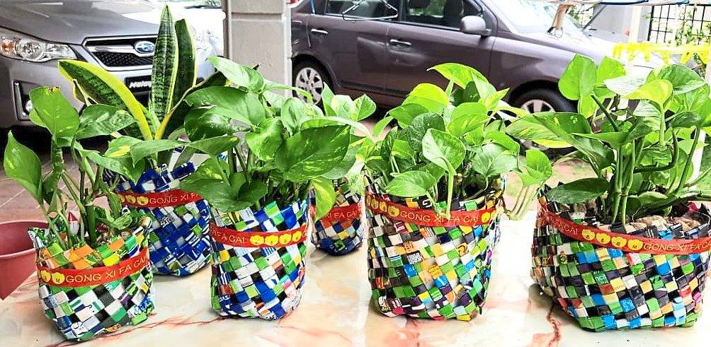 These bags for plants are made by senior citizens under Ipoh City Watch's  project.