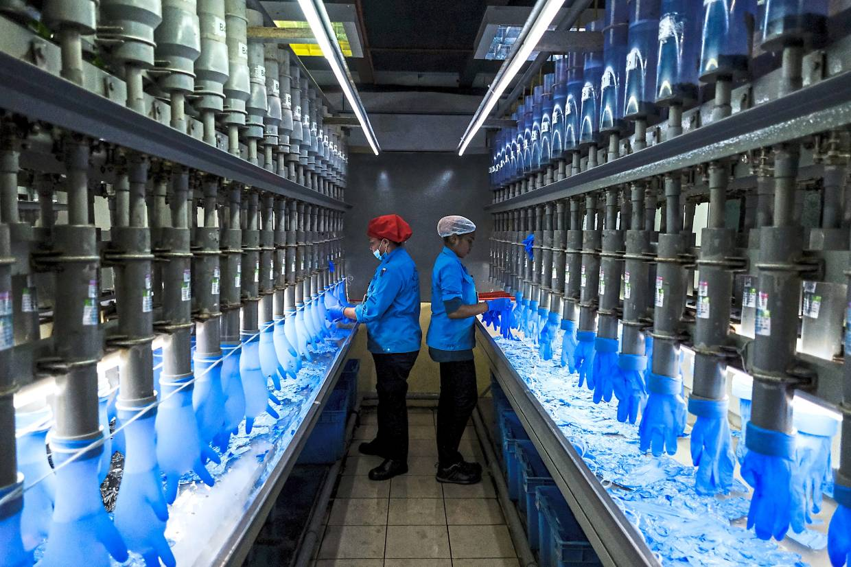 Price drop: Employees check latex gloves at a Top Glove factory in Setia Alam, Selangor. Top Glove, the world's largest glove maker, saw its share price drop 3.9% to close at RM5.43 yesterday. — Bloomberg