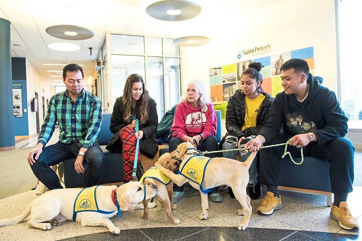 Puppy-raisers (from left) Director of Music Joseph Legaspi, senior Carolina Ruiz, chemistry professor Patricia Redden, and sophomores Cynthia Garcia and Ivan Aquino are seen with their puppies Hogan, Rainer and Murtagh at the MacMahon Student Center in SPU, Jersey City.