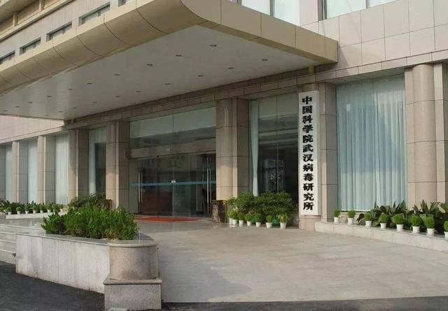 Wuhan virology institute dispels rumours surrounding coronavirus