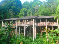Malaysians urged to travel domestically