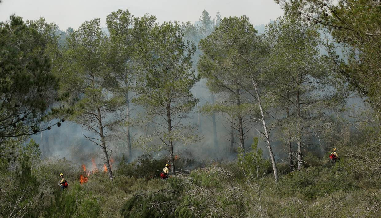 Firefighters monitored by Prometeo device (by IBM) work during prescribed burn of the forest in Olivella, south of Barcelona, Spain.