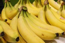 Bananas remain a large slice of Laos' export pie