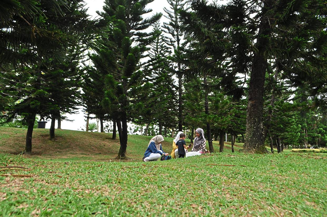 The Saujana Hijau Park in Precinct 11 offers ascenery of rolling hills and pine trees. Green spaces take up 38% of Putrajaya.