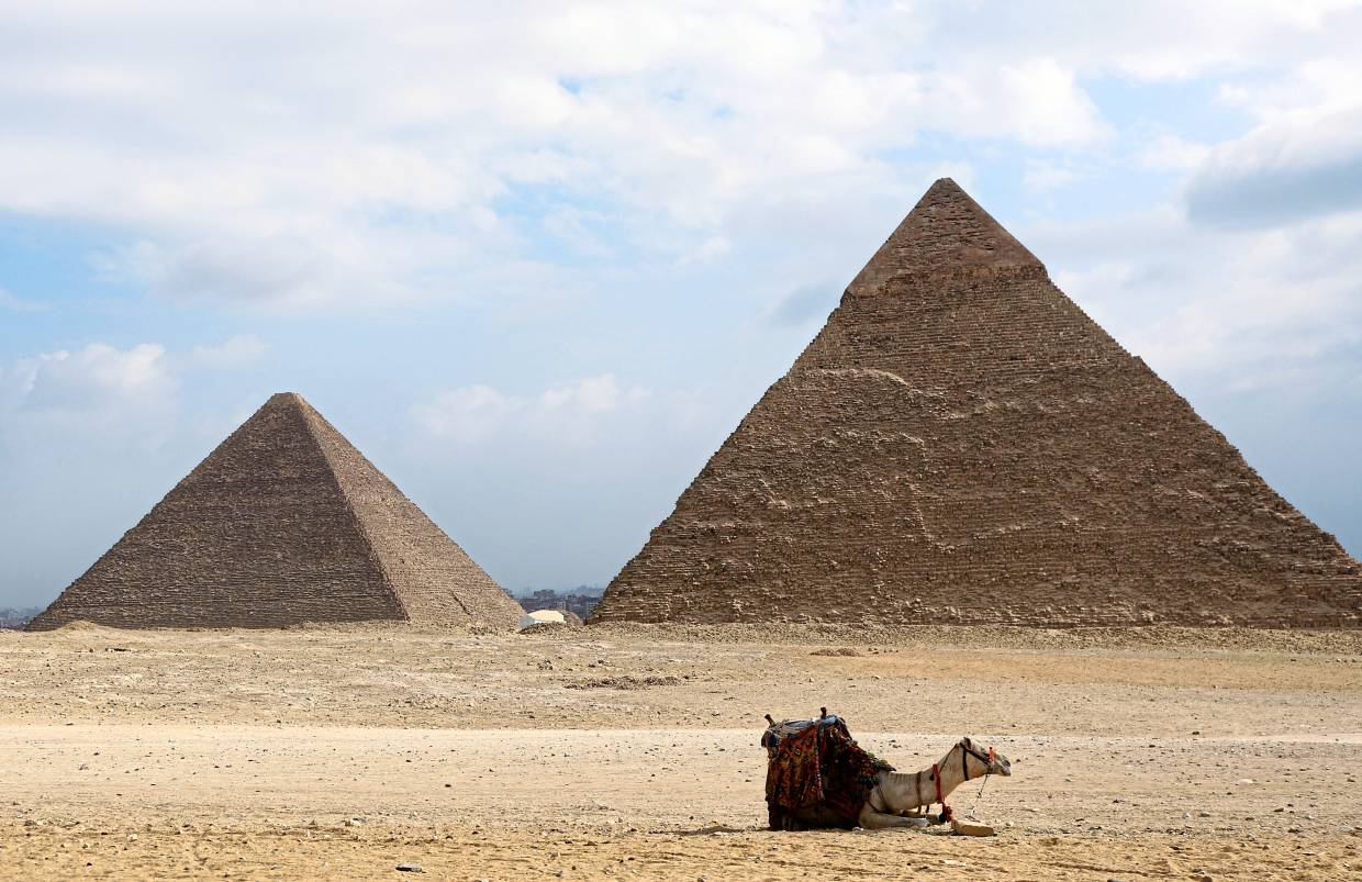 A camel is seen in front of the Great Pyramids in Giza, Egypt. Genetic sequencing helped identify camels as the animal that spread MERS to humans. — Reuters