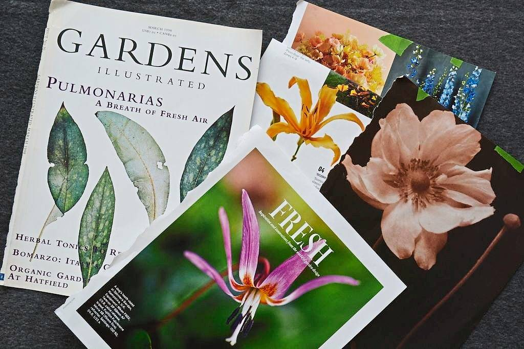 Photos and drawings from botanical magazines and books inspired the painter.