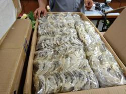 Sibu authorities cripple bird's nest-smuggling ring