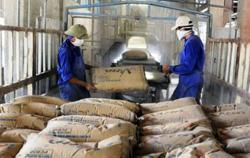 Cement producers in Vietnam face multiple problems