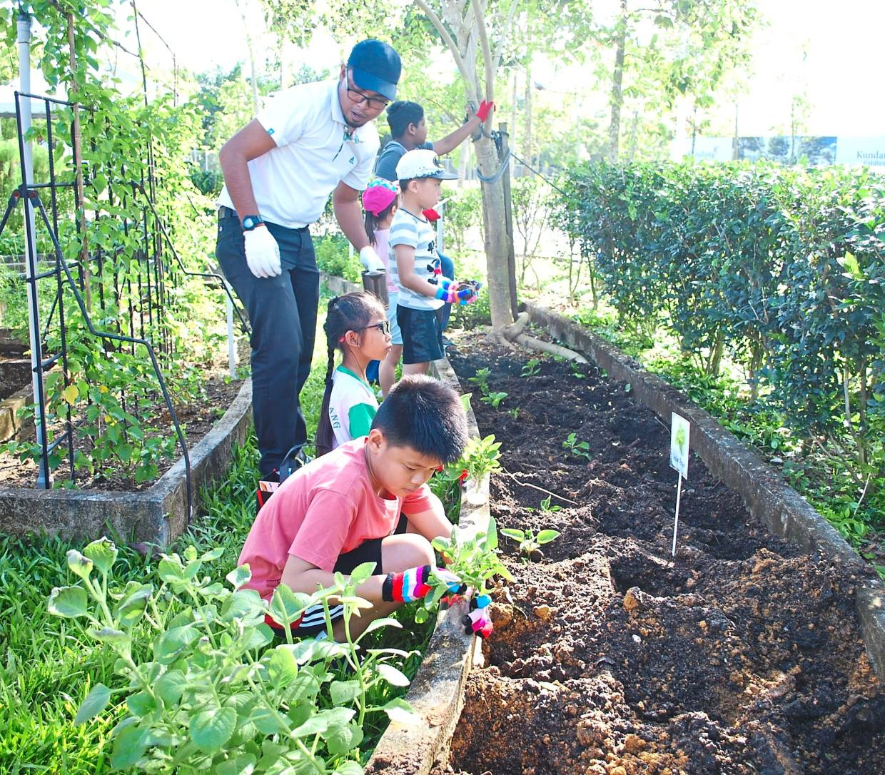 Community engagement activities are held frequently in Kundang Estates to cultivate appreciation for nature.