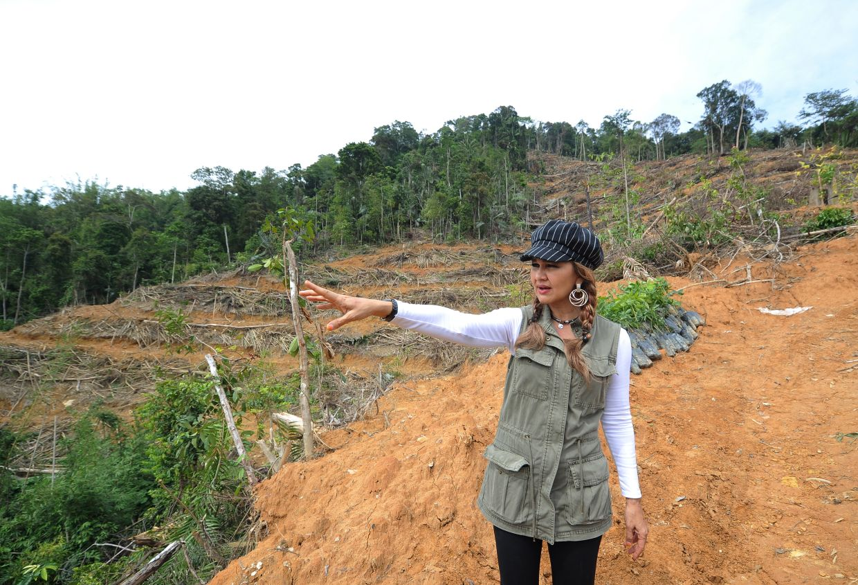 Shariffa in the field in 2016, pointing out the sad state of Teranum forest reserve in Pahang to the media. — Filepic