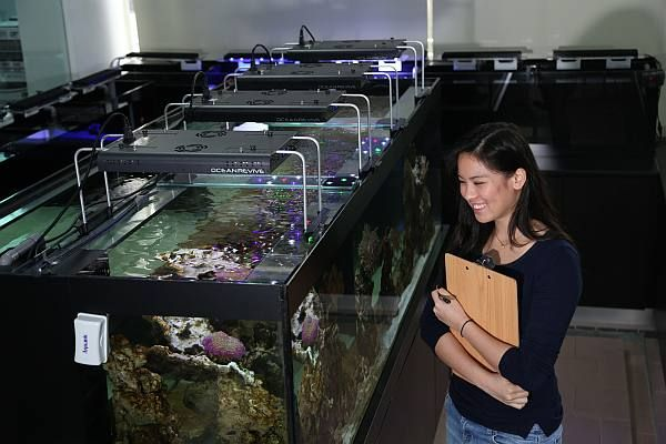 Diving deep into aquatic sciences at UCSI University