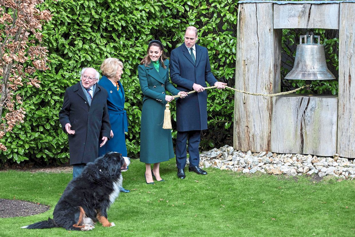 Another classic photo featuring Brod, the Irish presidential dog. — AFP