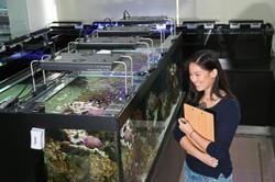 Diving deep into aquatic sciences