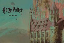 Cast a banishing charm on boredom with the Harry Potter At Home hub
