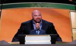 Mixed martial arts: UFC close to securing private island for fights - White