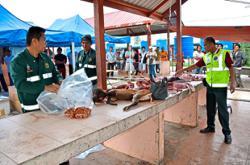 'Ban all wildlife markets'