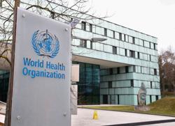 Explainer: Who's WHO? The World Health Organization under scrutiny