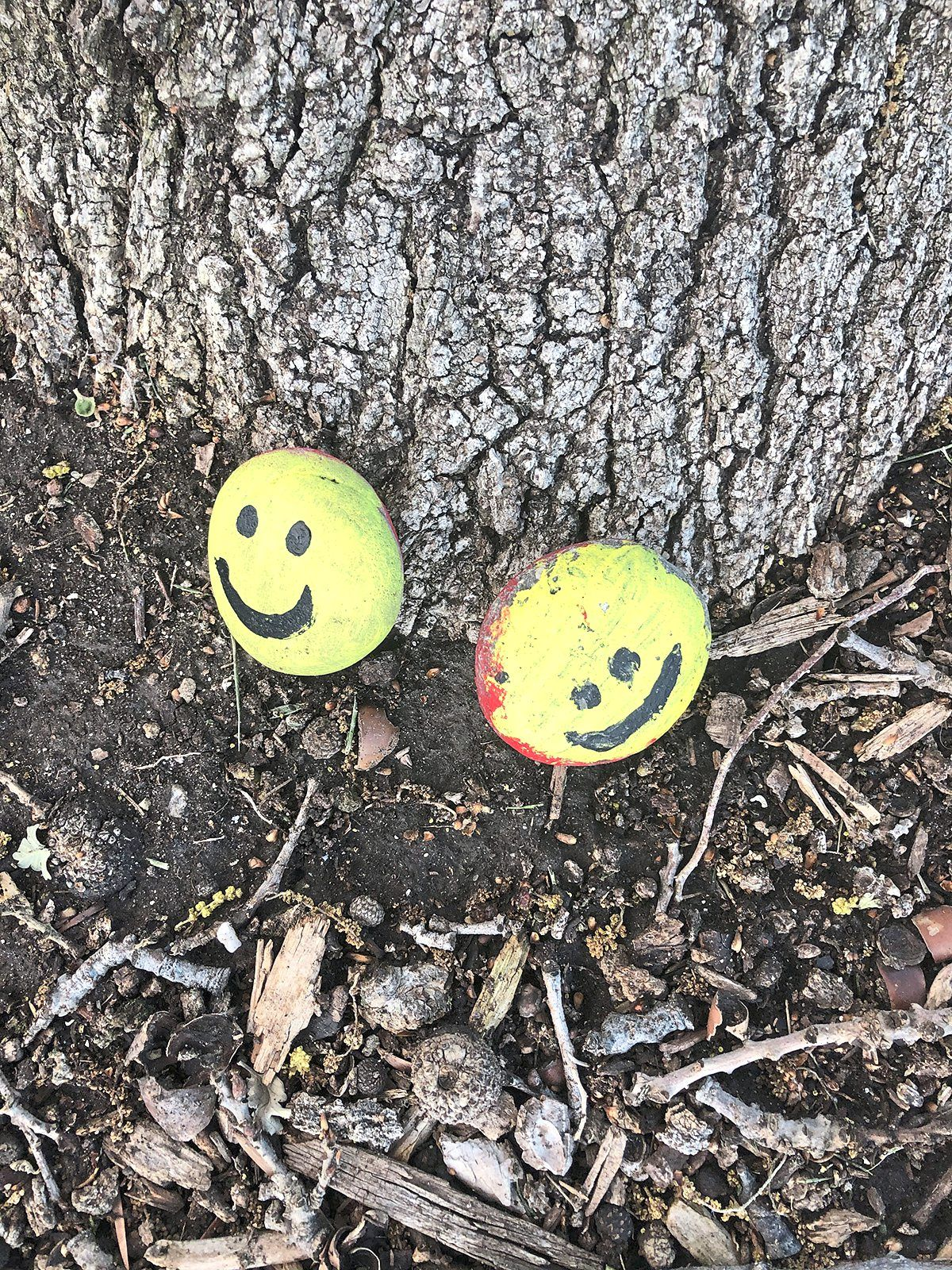 These two smiley-faced rocks are the work of Clarke, the former president of Honda Racing Development.