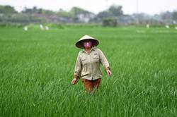 Keeping food supply chains open will help us all survive this stress test