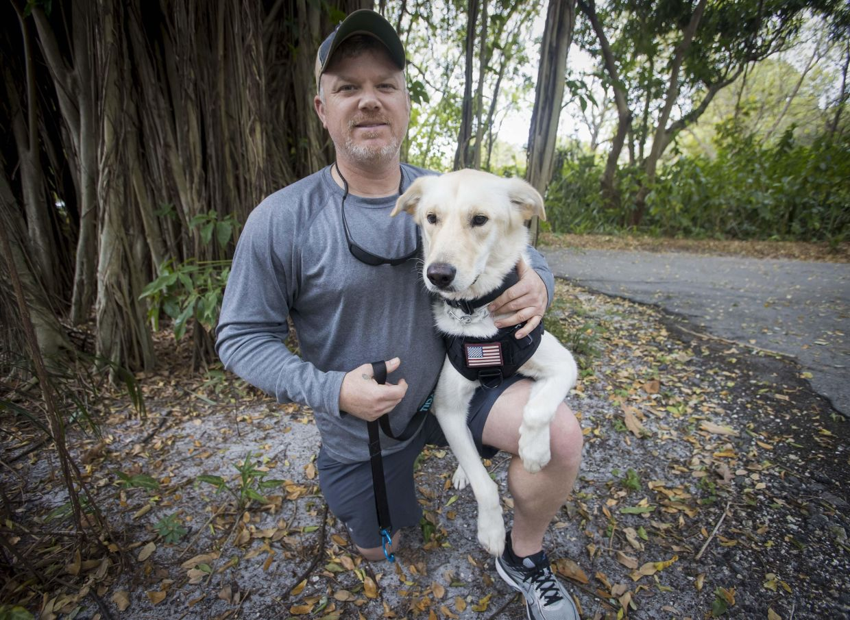 """""""Now I am in my training,"""" Wonacott says. """"He's trained; now it is my turn. It is awesome. I am getting used to the commands and understanding how he is going to interact with me."""" Photo: Tribune News Service"""