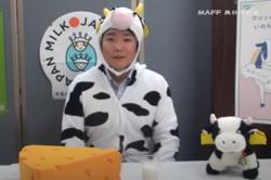 'Drink more milk': Japanese official pleads in cow costume as dairy industry struggles